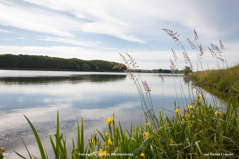 Poschwitzer-Teich-in-Windischleuba-2