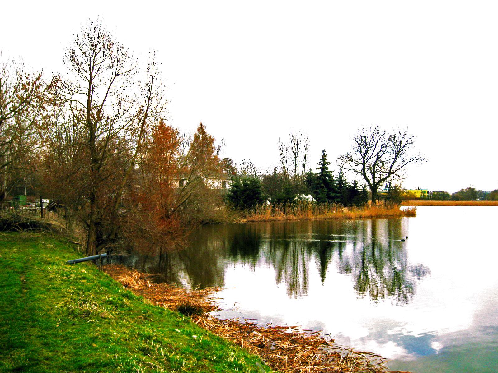 Teiche-Wilchwitz_Altenburg_0012