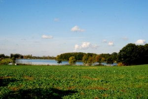 Der Poschwitzer Teich im Oktober 2009