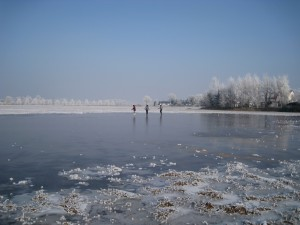 Wilchwitzer Teiche im Winter