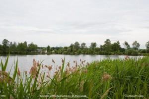 Foto des Badeteich mit Fischereigebäuden im Hintergrund