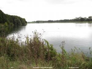 ein Foto des Poschwitzer Teich in Windischleuba